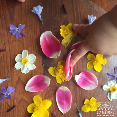 Four Flower Moon Activities for Kids
