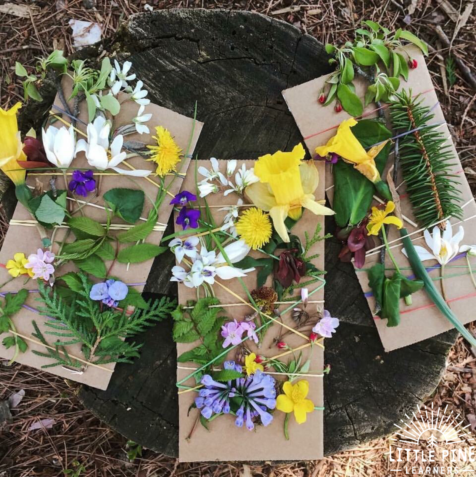 Try weaving flowers on cardboard with rubber bands!
