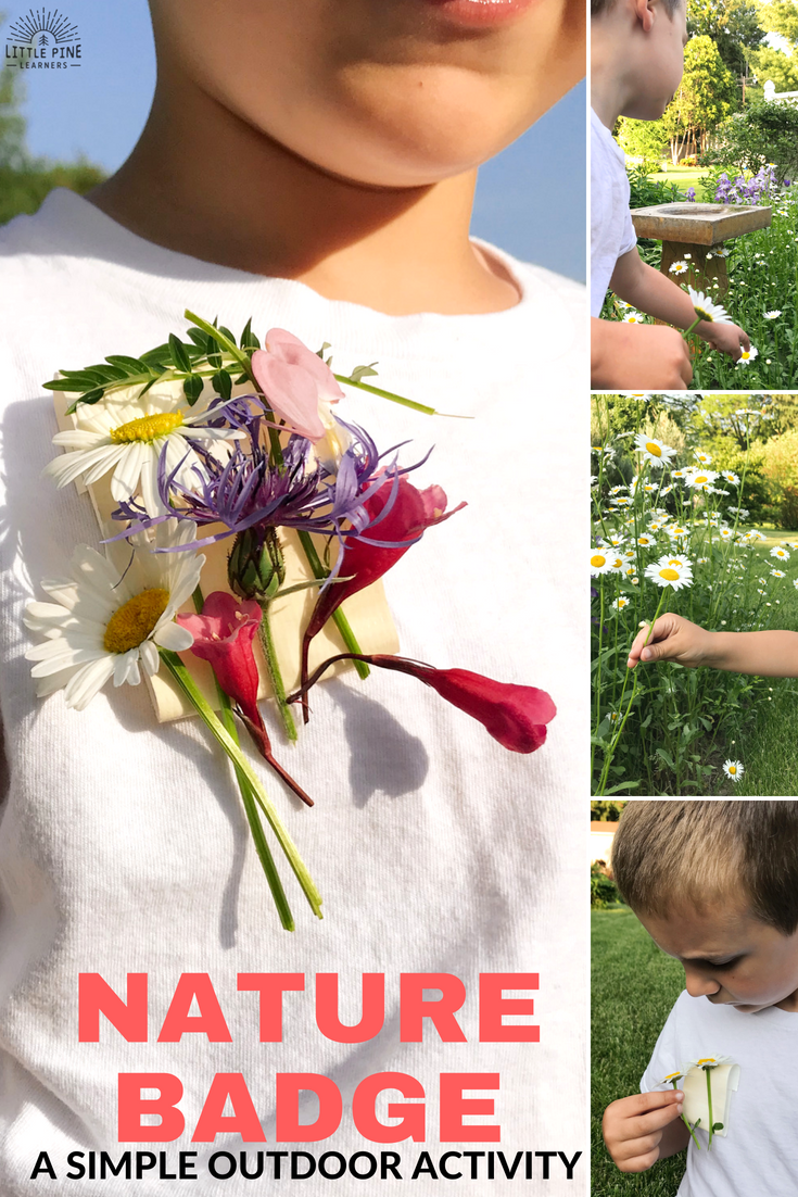Here is a simple outdoor activity to try the next time you go on a nature walk with your kids! Whether you are hiking on the trails or exploring your very own backyard, this activity is sure to keep your children exploring and searching for their next nature treasure to display on their badges!