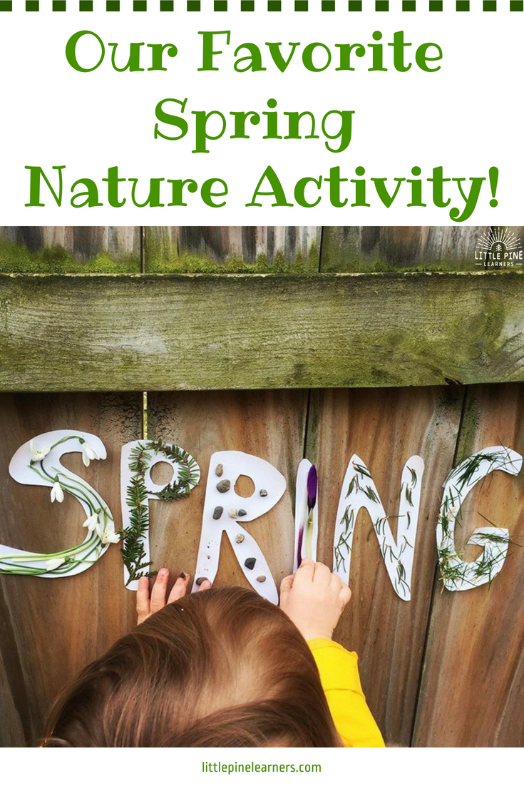 It can be difficult to think of new and fun ways to celebrate the changing seasons. Lucky for you, I've got a great idea! It's the perfect outdoor activity for summer, fall, winter, and spring! Celebrate the unique qualities of each season with this hands-on and engaging activity.