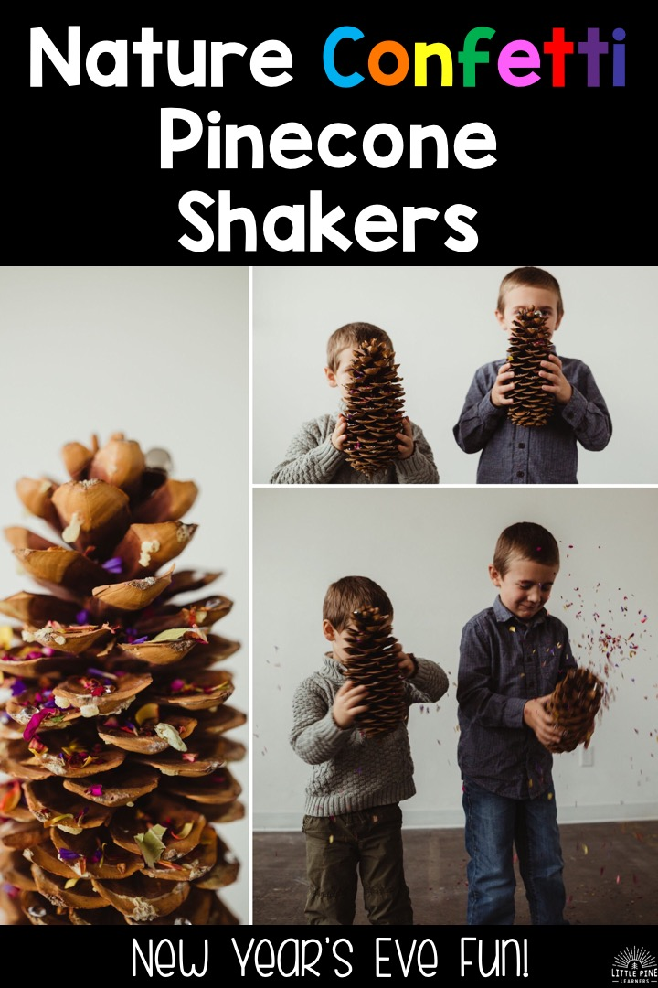 With the excitement of Christmas, New Year's Eve tends to slip by without any fun plans. This year I've gotten a head start on planning a fun new tradition that includes a DIY New Year's Eve nature confetti shaker and noisemaker all in one! I also share why this nature confetti is not your typical nature confetti. I hope these ideas find a special place in your heart and home for the holidays!