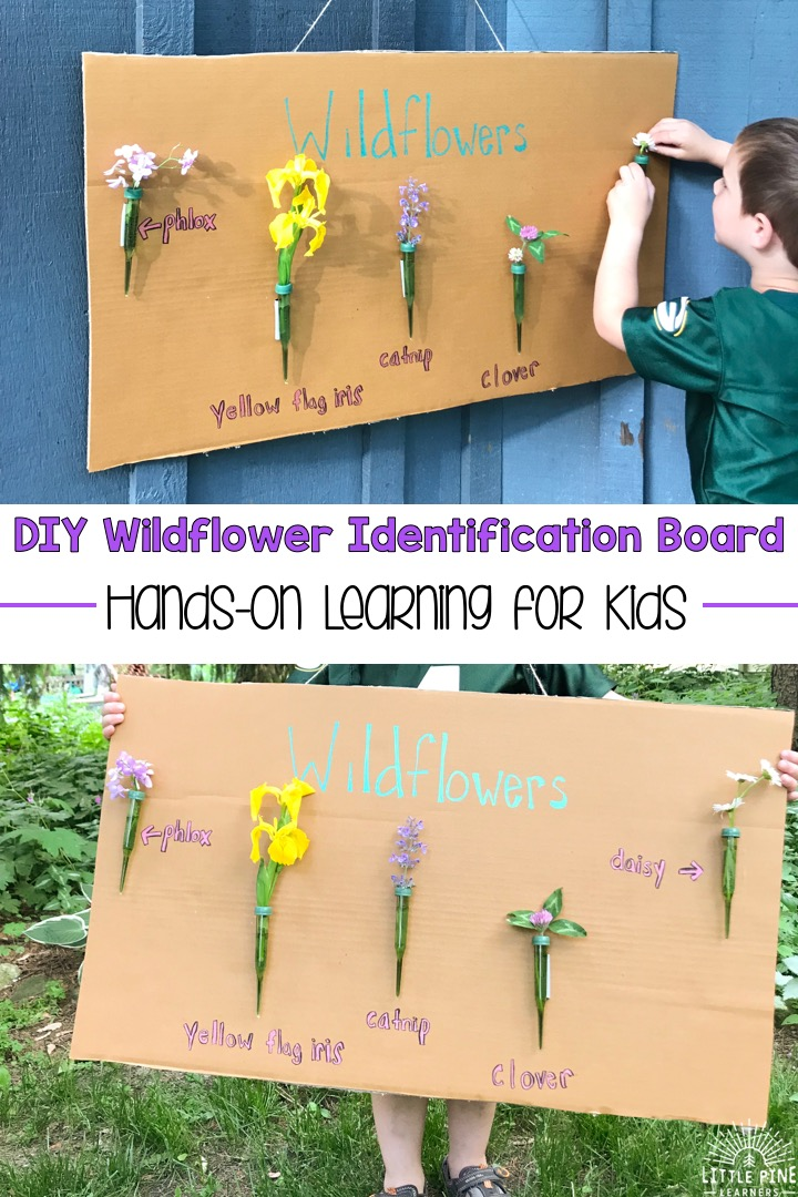 Are you looking for a fun and hands-on way to learn wildflower identification with your kids? Try this activity to get your kids outdoors and identifying these beautiful pieces of nature. Whats the best part?! When you are finished, you will have a beautiful piece of nature art for your home!