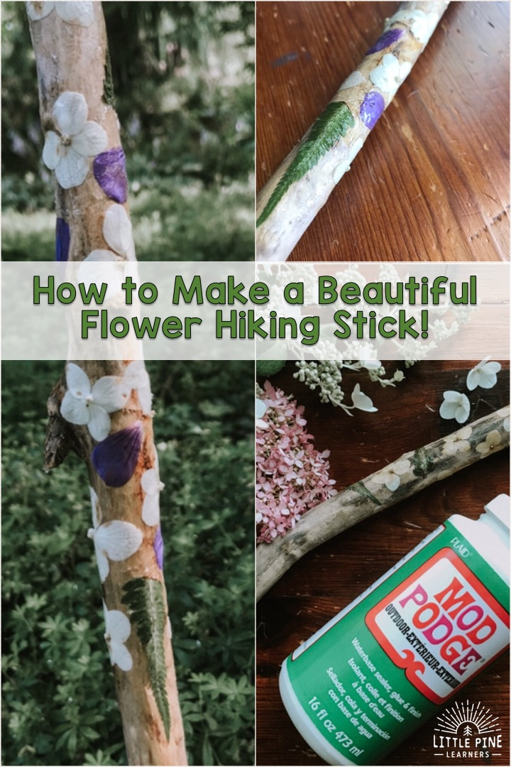 Learn how to make this beautiful flower hiking stick for kids!