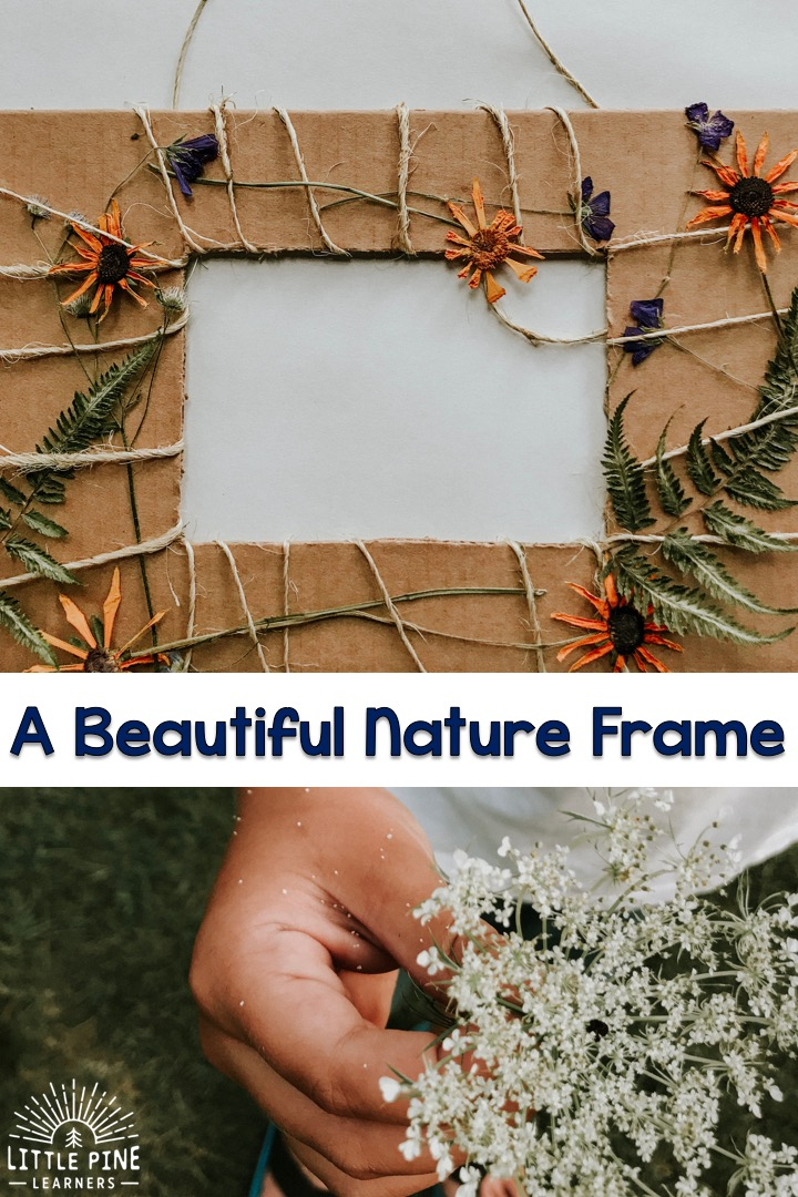 A beautiful nature frame!