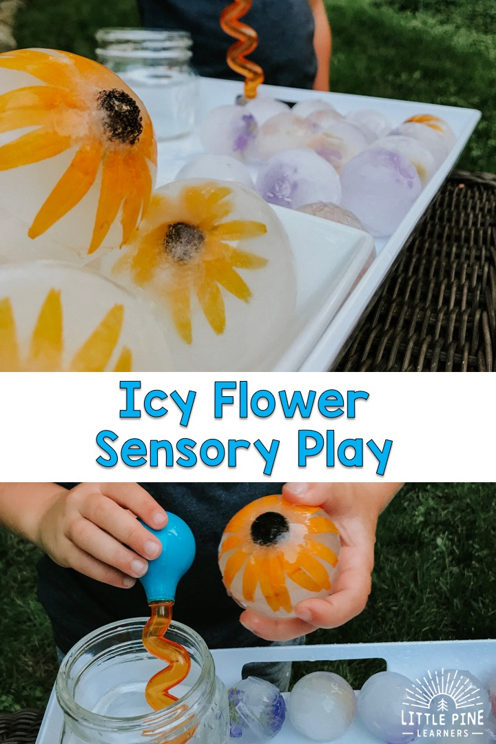 Looking for a unique sensory bin that will cool off your children and keep them entertained for a REALLY long time?! Then you are in the right place! Just freeze wildflowers in extra large sphere ice molds and your morning is set