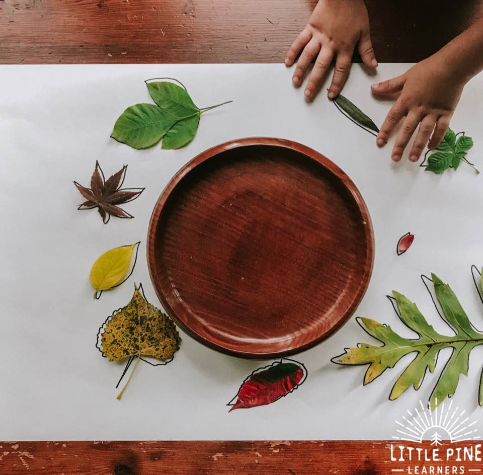 Simple leaf activity for kids!
