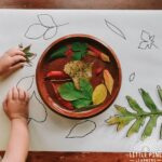 Try this simple leaf matching game for kids today! This game will give your child the opportunity to look closely at leaf details, identify leaves, strengthen fine motor skills, and appreciate nature in a new way!