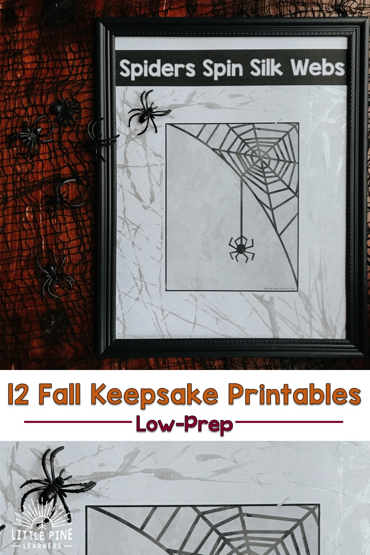 Check out 12 low-prep fall keepsake printables filled with spider, bat, pumpkin, apple and other fall nature themed activities!