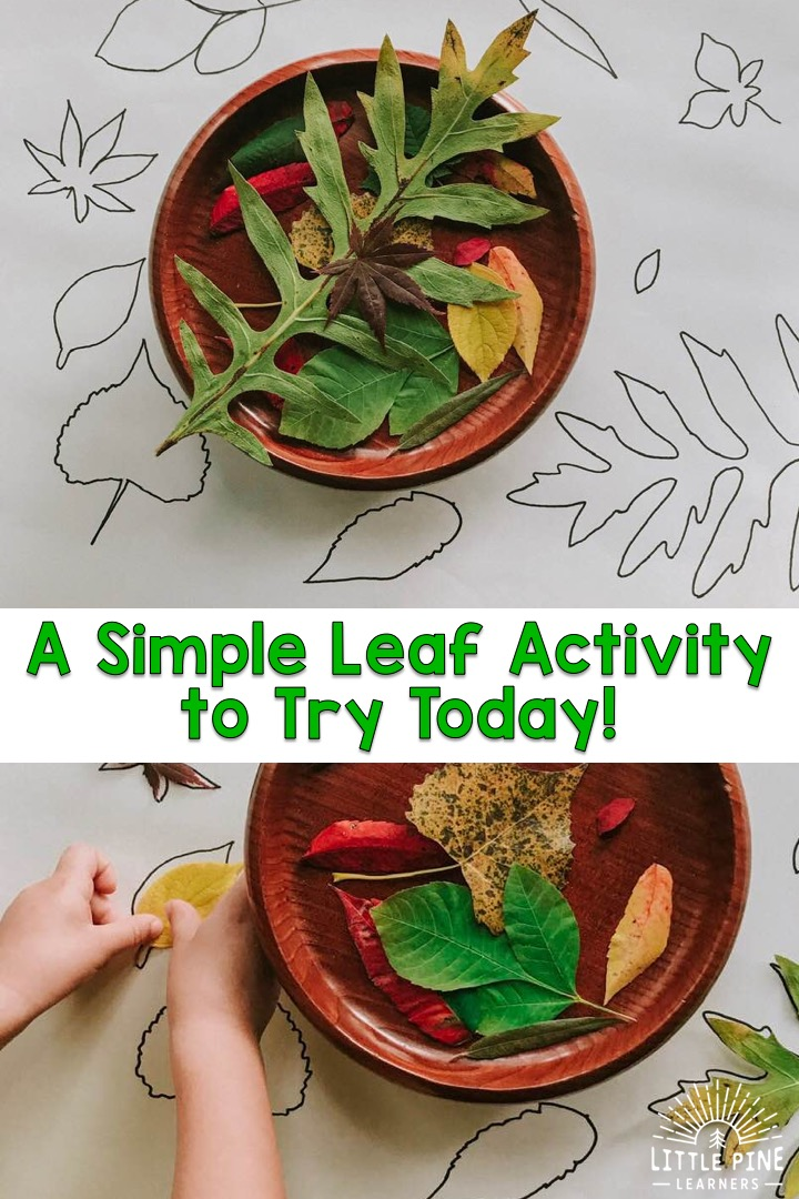 Pin this activity to save it for later!