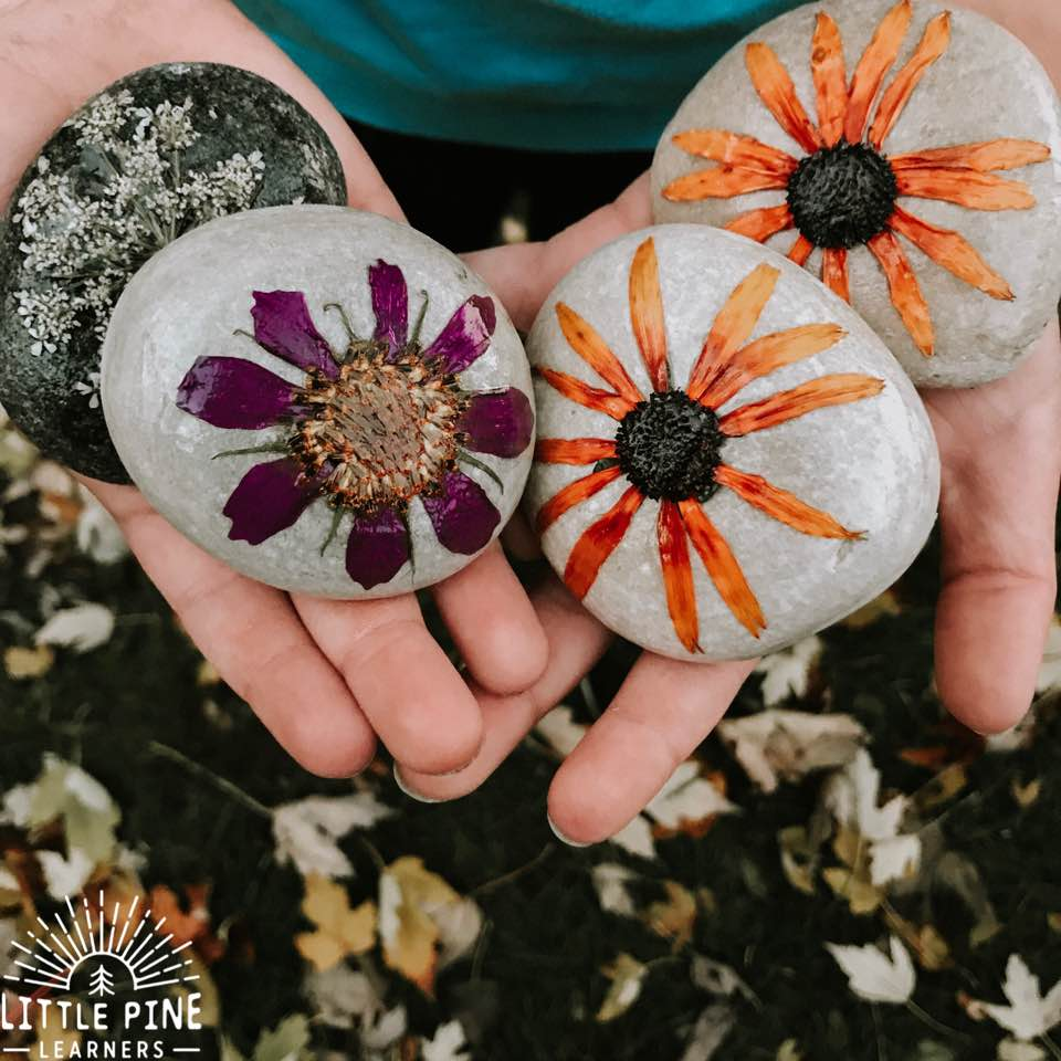 What if I told you there is a way to add flowers to your kids nature activities and there's a solid chance (I'm a realist) you can enjoy them over and over again, for months if not years?!
