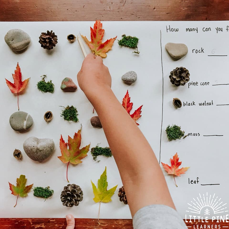 Here is a simple, inexpensive and beautiful nature math activity for kids! This is perfect for the homeschool or classroom setting and can be easily differentiated to meet the needs and interests of all young learners. If you love to bring the outdoors in then this one is for you!