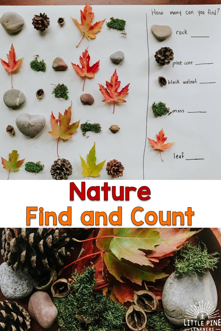 Here is a simple, inexpensive and beautiful nature math activity for kids! This is perfect for the homeschool or classroom setting and can be easily differentiated to meet the needs and interests of all young learners.