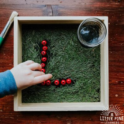 Pine Needle Sensory Writing Tray