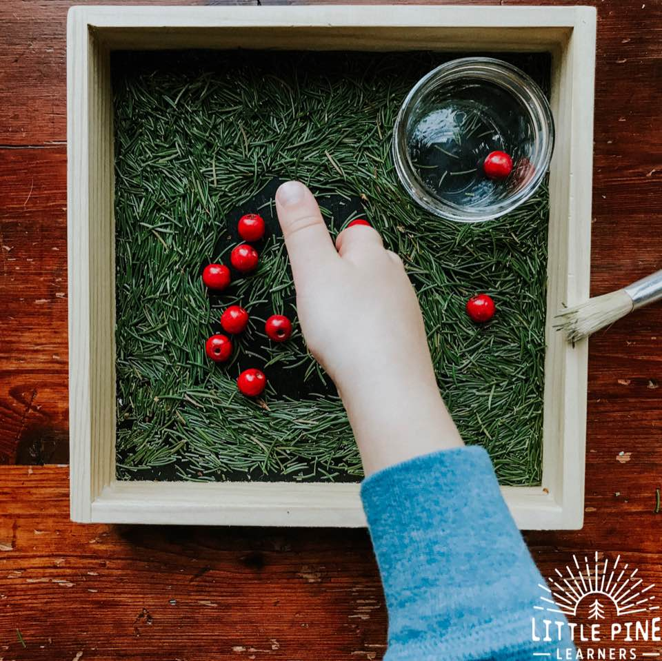 Here is a unique, free, and beautiful sensory writing tray filler to try this winter! Children will love cutting and tearing the pine needles for this activity! Once its ready, children can practice writing their letters and other prewriting strokes in the fragrant pine needles. This is the perfect way to work on fine motor skills this holiday season!
