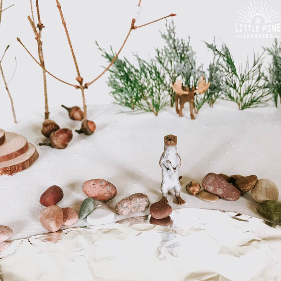 You've stopped at the right place for the best tips and tricks to turn a simple cardboard box into a woodland winter wonderland! Many of the items we use in this small world can be found right in nature.
