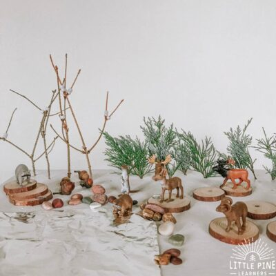 Winter Small World Play Using Natural Material