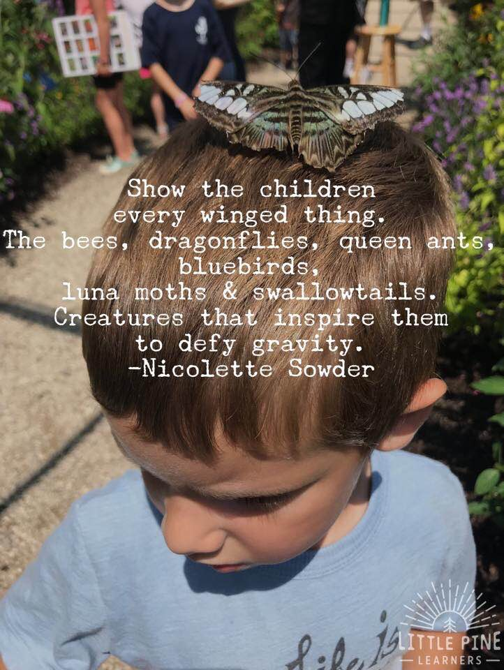Cute nature quote for kids!