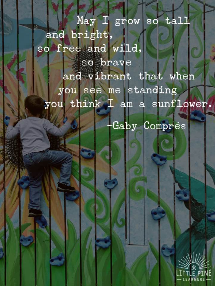Cute nature quotes for kids!