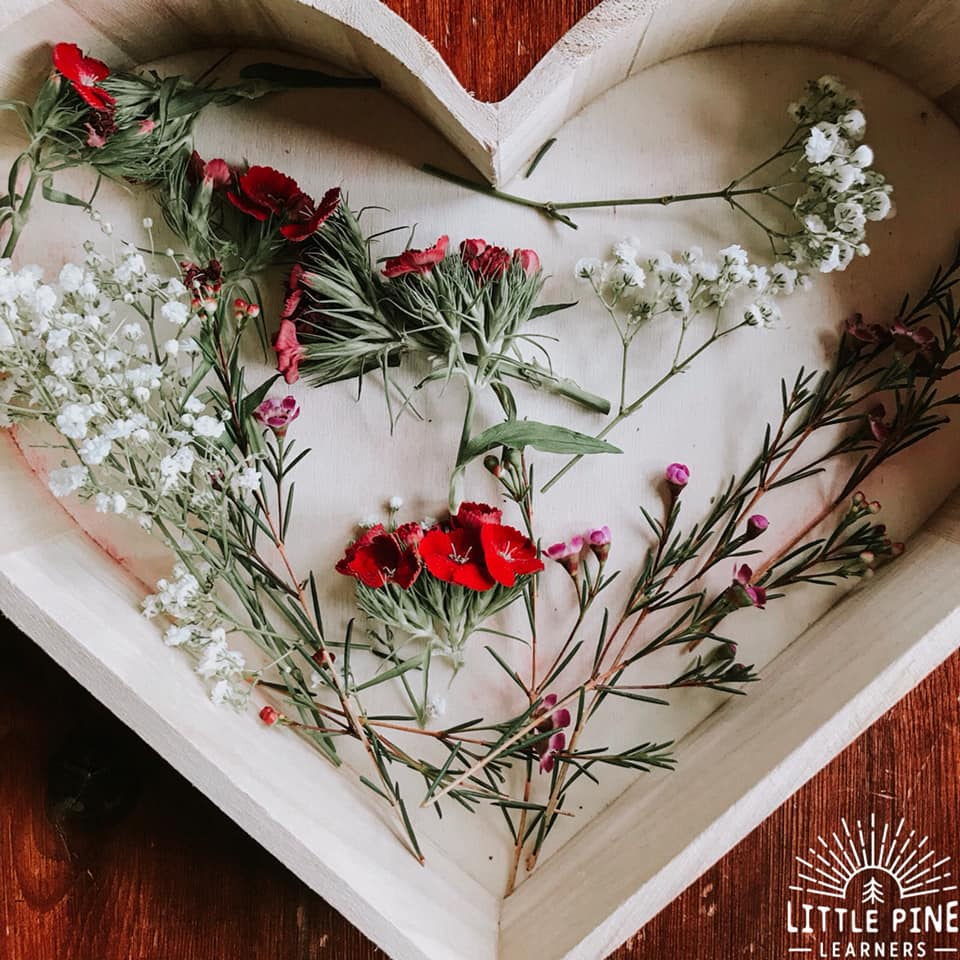 Try this simple nature heart weaving activity for Valentine's Day or Mother's Day. The contrast of the natural cardboard heart with the colorful flowers, makes this the most beautiful gift to hand out this Valentine's Day!