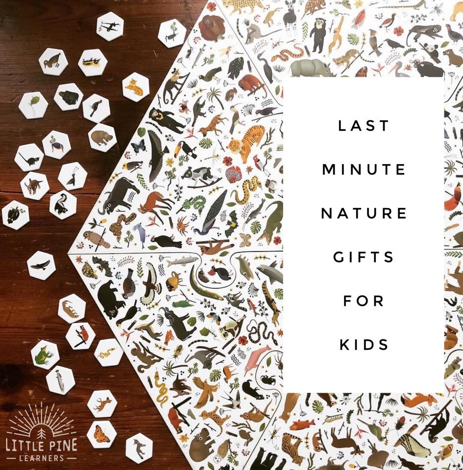Here is a list of last minute gifts for nature loving kids! From board games to nature crafts to home decor, I included a little bit of everything.