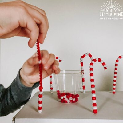 DIY Pipe Cleaner Candy Cane Shop