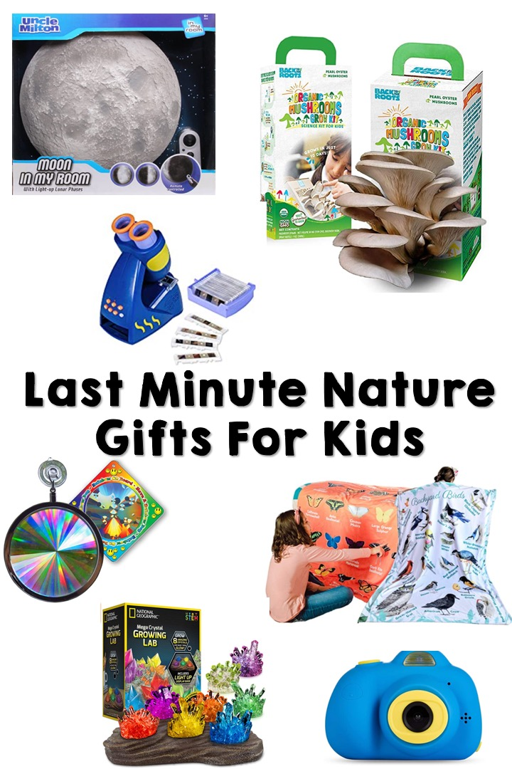 Here is a list of last minute gifts for nature-loving kids! From board games to nature crafts to home decor, I included a little bit of everything.