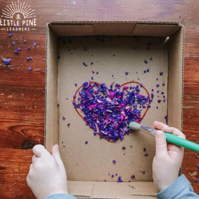 Flower Petal Sweep {A Fine Motor Activity}