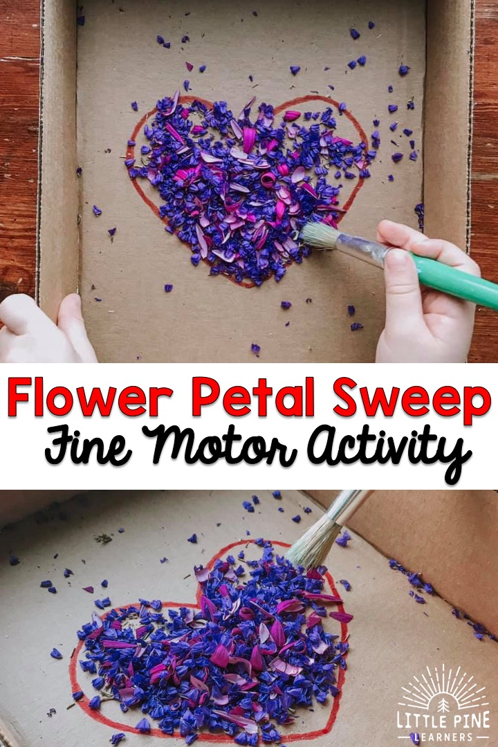 Here is a fun fine motor activity for preschoolers! This activity will give children the opportunity to work on hand-eye coordination, pencil grip, and other fine motor skills. You can use a bouquet of flowers if you're trying this activity for Valentine's Day or flowers from the garden if you are trying it during summer!