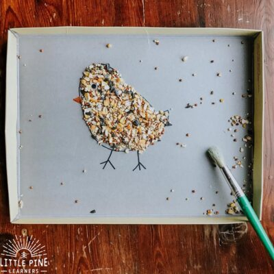 Bird Seed Sweep {A Fine Motor Activity}