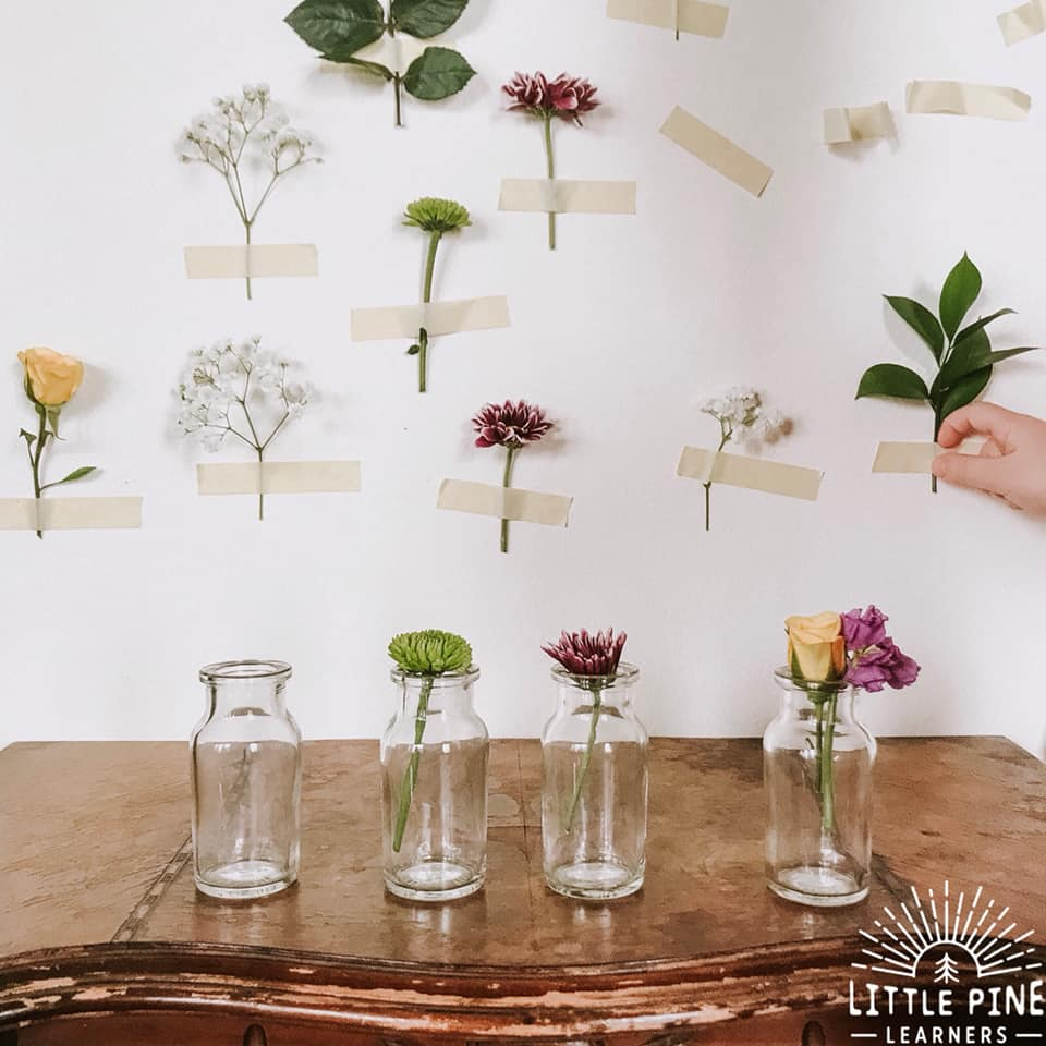 This nature activity for kids is simple, beautiful and packed with opportunities for learning and fine and gross motor work!