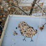 Simple bird feeder for kids!