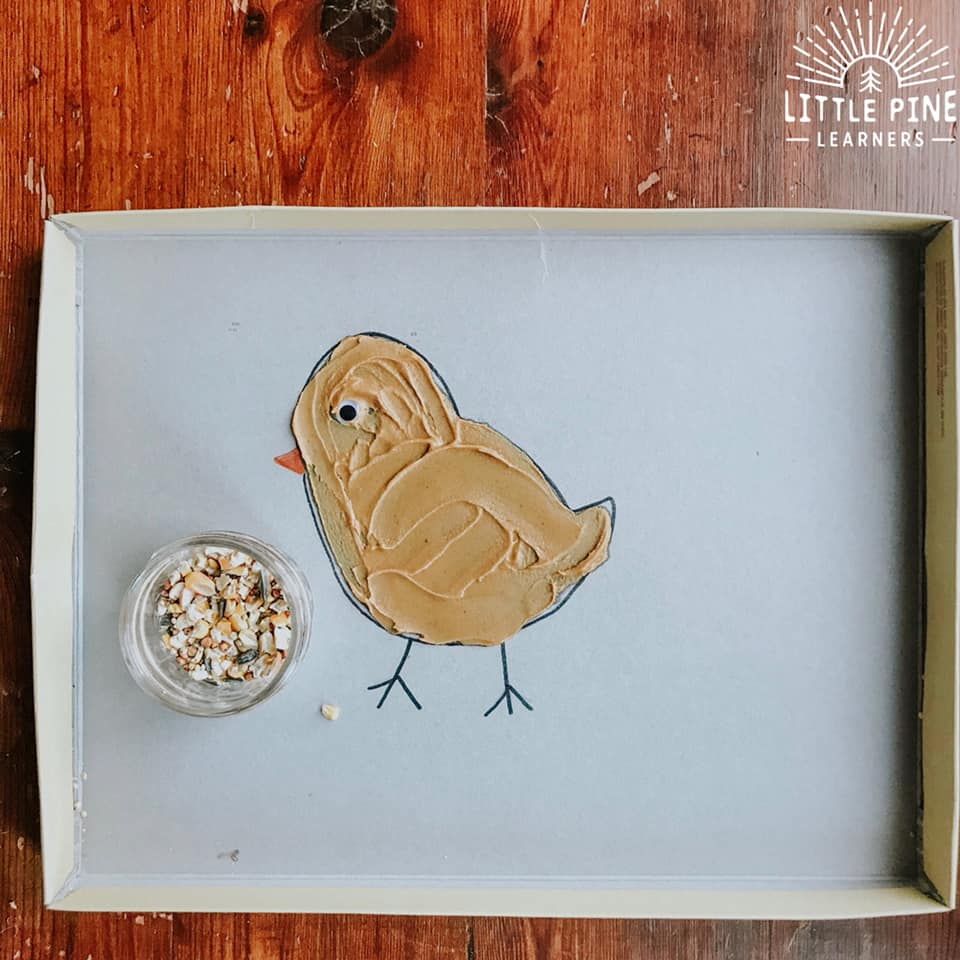 Simple bird feeder for kids!