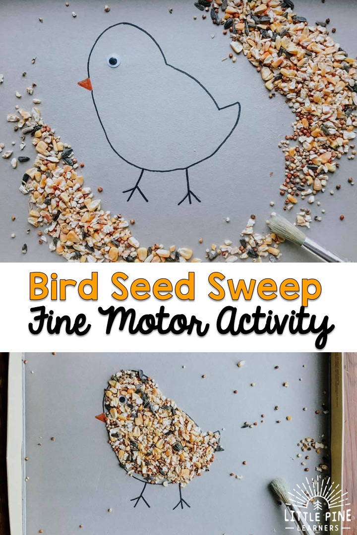 Here is a great activity that's fun for any season and perfect for little bird lovers! This activity will give children the opportunity to work on hand-eye coordination, pencil grip, and other fine motor skills. You just need a few supplies and you are ready to set up this adorable preschool invitation.