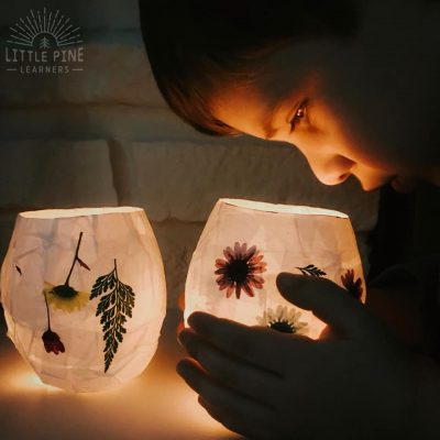 Magical Pressed Flower Lanterns