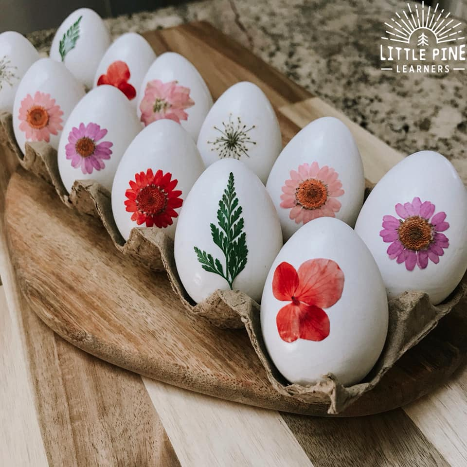 Try making these simple and beautiful pressed flower Easter eggs this spring! Your children will be delighted to search for them on Easter morning and they will make a beautiful decoration for the rest of the week. You only need a few supplies and they are so easy to make!