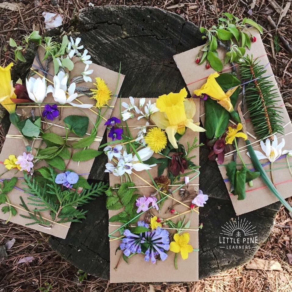 Cardboard, rubber bands, and flower nature weaving for kids.