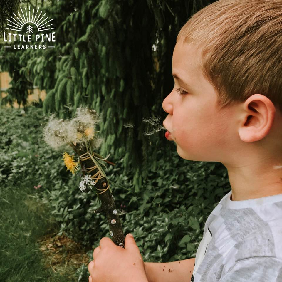 Dandelion Wish Hiking Stick for Kids