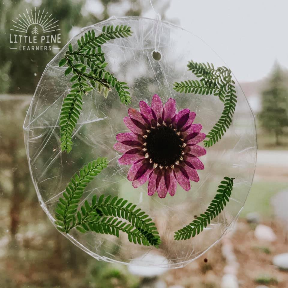 Earth Day is right around the corner, so I'm already thinking of fun ways to craft with reusable items from around our house. I decided on these absolutely gorgeous nature sun catchers that kids can help make. These sun catchers do not require glue, tape, staples, or sticky contact paper!