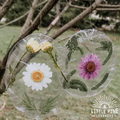 Nature Sun Catchers Made With Recycled Items