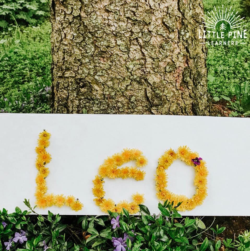 Here is a simple and adorable name activity for preschoolers! This low-prep activity for kids helps them work on letter and name recognition skills while strengthening fine motor skills. Try using dandelions or wildflowers!