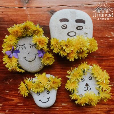 Dandelion Rock Family