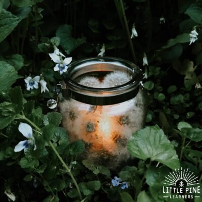 Dandelion Wish Luminary