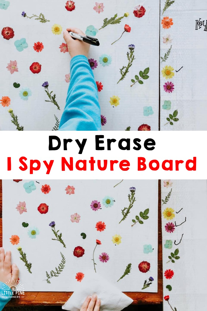 Check out the most BEAUTIFUL I Spy game you will ever see! This is so simple to make and children will love learning with this activity board. This is also a dry erase board, so it can be enjoyed over and over again! Children can work on plant identification, colors, counting skills, and more.
