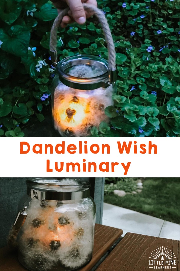 Try making this beautiful dandelion wish luminary! It's so simple to make and looks stunning when illuminated. It's the perfect outdoor activity for kids during a beautiful spring evening. Get outside and try it today!