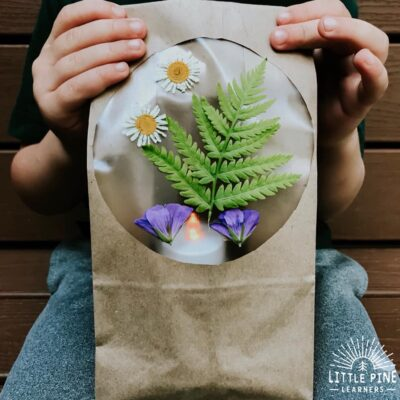 Nature Paper Bag Luminary