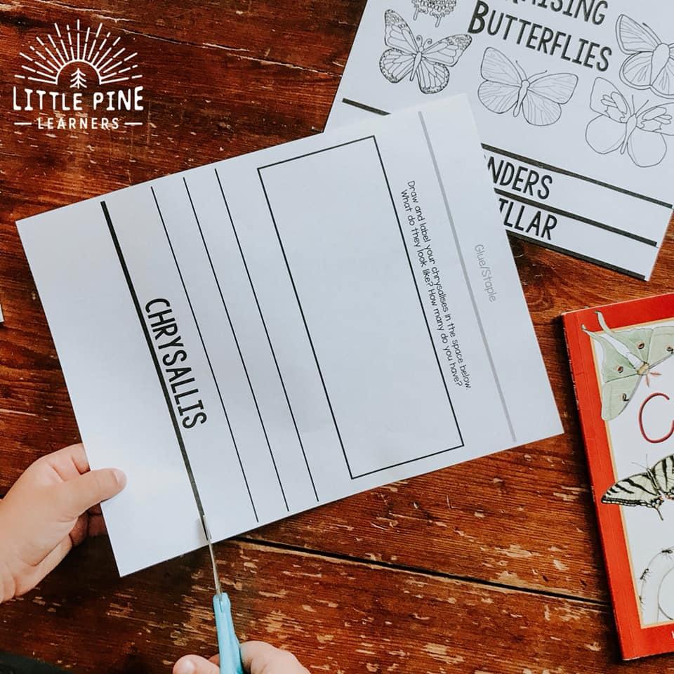 Nature journal for kids printable!