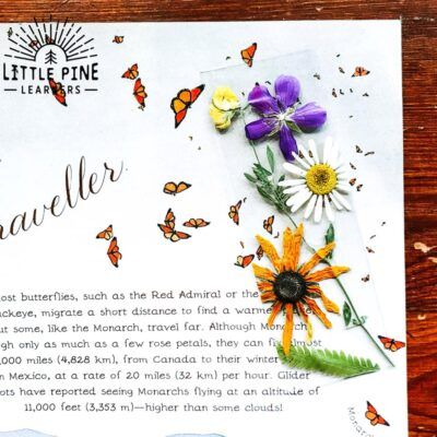 Easy DIY Flower Bookmark