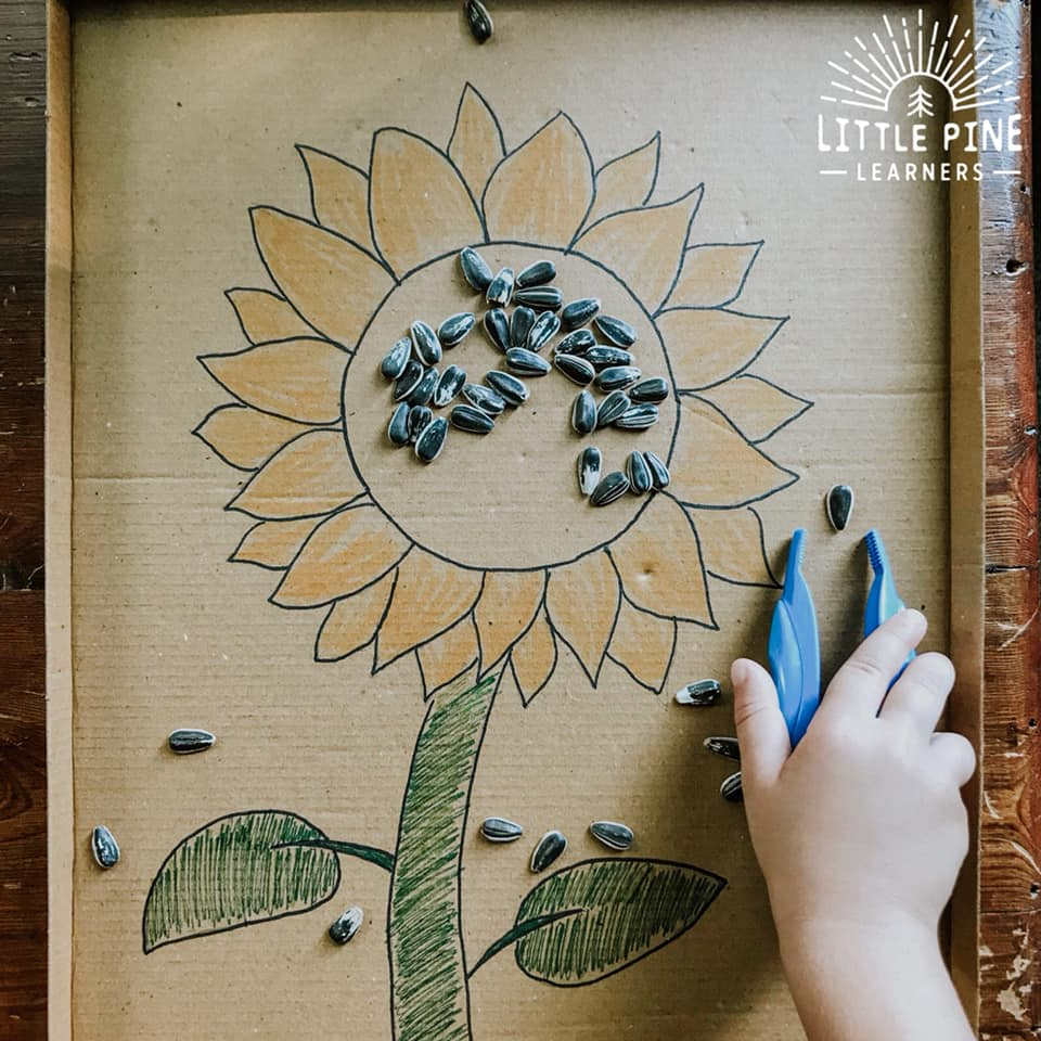 Fun sunflower activities!