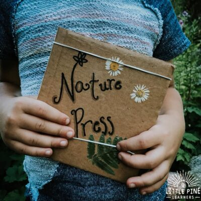 Bring along this portable cardboard flower press the next time you go on a nature walk! This is an easy way to get kids outside and they will love looking for the perfect flowers to press. You can also press leaves and other flat pieces of nature!