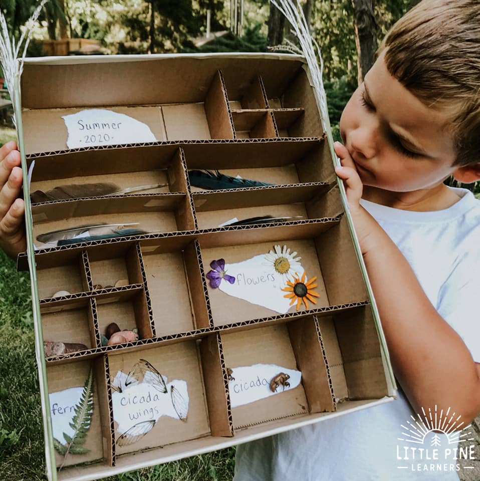 Try making this DIY cardboard display shelf to showcase all of your beautiful nature finds. Children will love looking for pieces of nature to put in the box and enjoy organizing and looking at their collection.